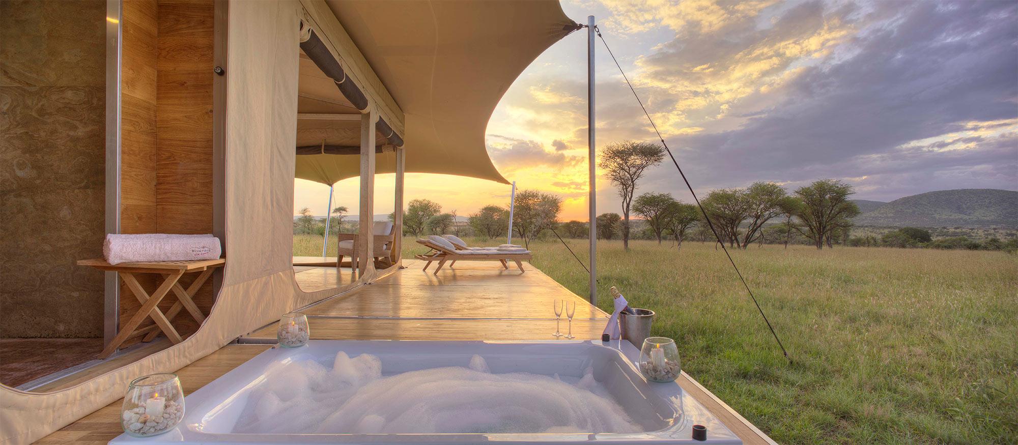 The most stunning Serengeti honeymoon at Roving Bushtops